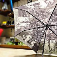 【折 猫ちゃんシリーズ】55cm 傘専門店 通販 東京 折り畳み 旅傘【癒し Cat B】