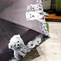 【折 わんちゃんシリーズ】55cm 傘専門店 通販 東京 折り畳み 旅傘【癒し Dog A】