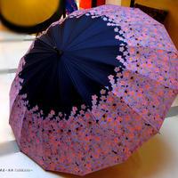【実写】傘専門店 通販 東京 日傘 晴雨兼用 グラスファイバー サビない 遮光 遮熱 旅傘  【16本骨 サクラ Black】