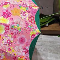 【16本骨 和柄シリーズ】55cm 傘専門店 通販 東京 晴雨兼用 UV 紫外線 旅傘【切継 緑】
