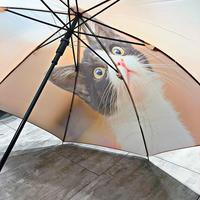 【転写 猫ちゃんシリーズ】60cm 傘専門店 通販 東京 折り畳み 旅傘【Collar Cat D】
