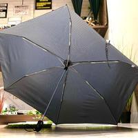 【自動開閉  スリム】傘専門店 通販 東京 折りたたみ傘 ワンタッチ レディース メンズ 旅傘【ドビー 55cm GLAY】