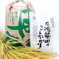 丹波篠山のこしひかり 農薬不使用 玄米 25㎏