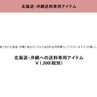 北海道・沖縄専用送料アイテム