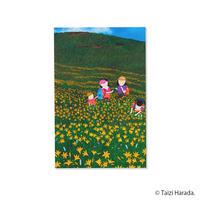 【原田泰治】ぽち袋  【高原の花】