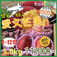 [出荷6月下旬〜7月上旬]台湾産  愛文芒果(アップルマンゴー)5.0kg(8-12玉)★送料無料