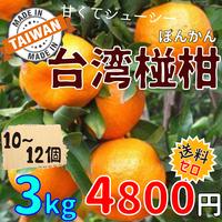 """[出荷12月中旬]台湾 """"椪柑(ぽんかん)"""" 3kg ★送料無料"""