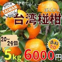 """[出荷12月中旬]台湾 """"椪柑(ぽんかん)"""" 5kg ★送料無料"""
