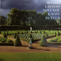 Mondo Grosso / Now You Know Better (12inch)