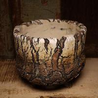 Pottery by Wood φ12.5cm タイポット P3