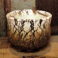 Pottery by Wood φ12.5cm タイポット P2