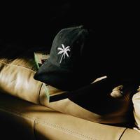 Palmtree Cap