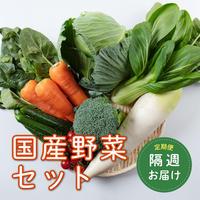 【定期便:隔週1回】青果のプロが選んだ国産野菜セット(税/送料込み)※安城市在住者限定