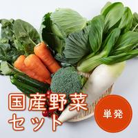 【単発注文】青果のプロが選んだ国産野菜セット(税/送料込み)※安城市在住者限定