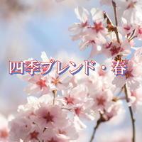 <<コーヒー豆 通販>>桜の花のようなフローラルな香り 四季ブレンド・春 250g