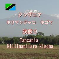 タンザニア キリマンジャロ 浅煎り 100g