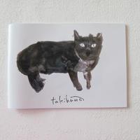 TAKIHANA YASUKAZU イラストブック
