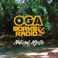 JAH WORKS-[OGA WORKS RADIO MIX VOL.12–NATURAL MYSTIC-]