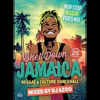 DJ AZOO-[SHELL DOWN JAMAICA vol.6 -REGGAE & CULTURE DANCEHALL]