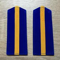 【コレクター商品】中国人民解放軍87式 空軍 専業軍士肩章