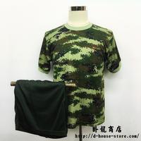 中国人民武装警察 武警 インナーシャツ 訓練服  Tシャツ 短パン 上下セット