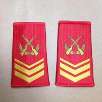 【三級軍士長】中国人民武装警察 07式夏制服用 筒型肩章 階級章