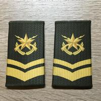 【コレクター商品】中国人民解放軍99式 陸軍 筒式肩章 三級士官