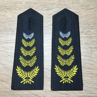 中国人2011式セキュリティ保安資格肩章 保安師