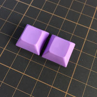 DSA PBT Keycap (2Piece/Purple)