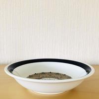 Gefle/ゲフレ/Aurora/オーロラ/スープ、パスタプレート/20cm/20-01
