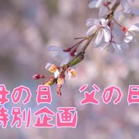 【ご連絡済の方用カート】母の日、父の日のオーダー