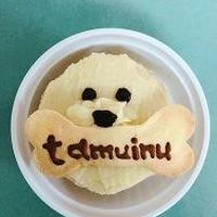 たむ犬ケーキ(1個)