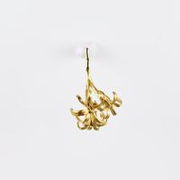 [Fillyjonk] crinum pierce 02 gold