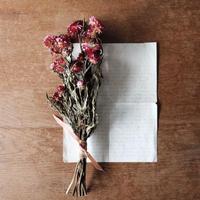 bouquet no.008