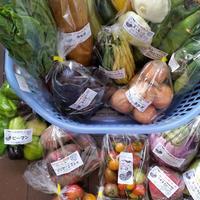 季節の変わり野菜セット(L) 4100円    (送料・税込)