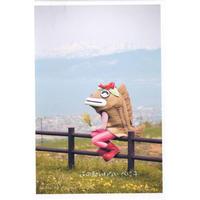 No.18岩内を眺める(ポストカード)