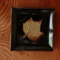 中里太郎右衛門窯 木の葉銘々皿(ふよう)