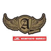 ANGELWAX ステッカー ゴールド×ゴールド W50×H24.5 【C2】