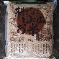 tasoこがね もち玄米 2.0kg (農薬・化学肥料不使用)