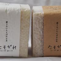 tasogare 米CUBE 2合×2個セット