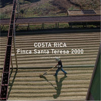 コスタリカ シティロースト 200g