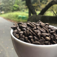 おすすめコーヒー豆定期便