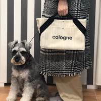 DailyBag