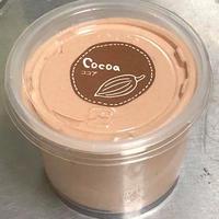 チョコアイス(9カップ)