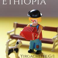 エチオピア イルガチェフェG1 MHAナチュラル