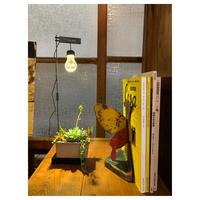ルーチェグロウライト LED植物育成ライト
