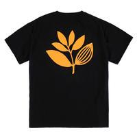 MAGENTA / CLASSIC PLANT TEE (BLACK)