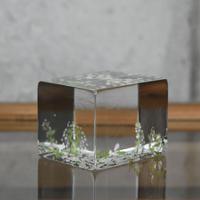 ornament「百花景 ゆきやなぎ」 金津 沙矢香 024799-3-298