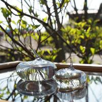 ornament「リングホルダ― 2set」三野 直子 027269-0-102