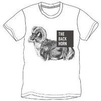 羊Tシャツ(ホワイト)